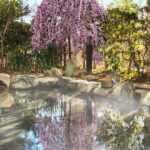 越生温泉 美白の湯 梅の湯